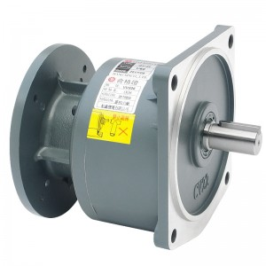 CVM  Vertical Gearmotor Speed Reducer